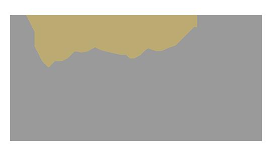 Default light bg logo
